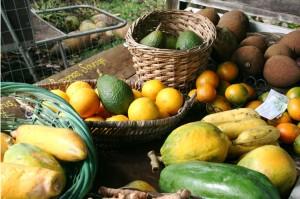 delicious organic fruit